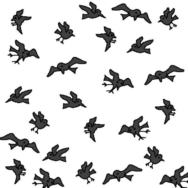 Blackbirds everywhere!